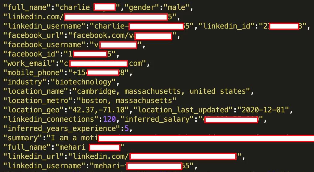 Un esempio tratto dal Data Breach. Si possono notare i vari dati trafugati